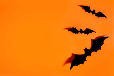 Halloween background flat lay. Scary bats on orange paper backdrop. Minimal clean design layout. Фото со стока