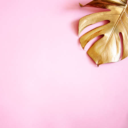 Luxury natural background with golden tropical leaves. Gold monstera leaf on pastel pink background. Clean minimal flat lay design. Trendy chic lifestyle fashion concept.