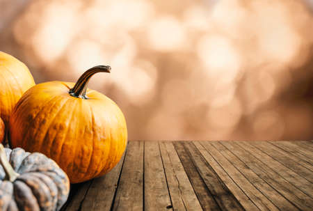 Autumn pumpkins still life on vintage wooden table and bokeh background. Thanksgiving family dinner greeting card design. Halloween pumpkin decoration border. Holiday festival concept.