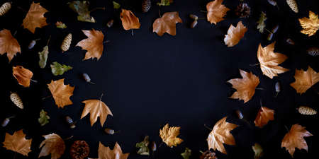 Autumn maple leaves frame on dark background with copyspace from above. November black friday sale and thanksgiving concept. Fall season natural flat lay border. Фото со стока