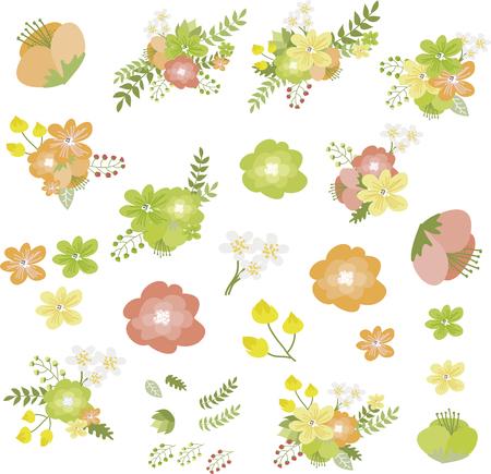 autumn flowers: Autumn flowers