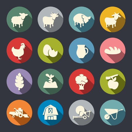chicken meat: Farm icon set