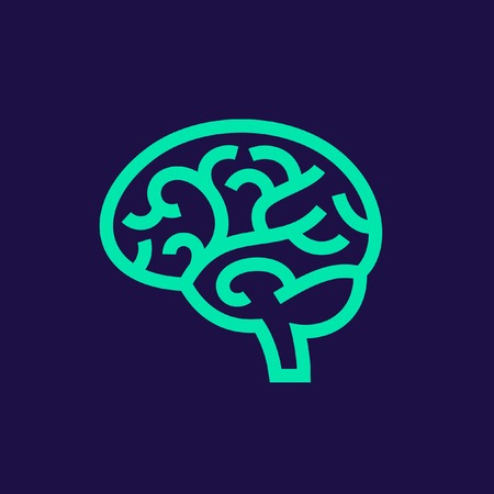 brain illustration: Brain vector illustration