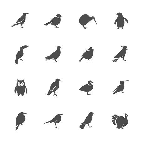 Aves conjunto de iconos Ilustración de vector