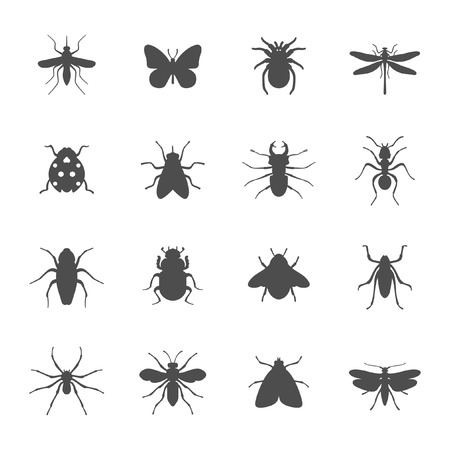 Insects icon set  矢量图像