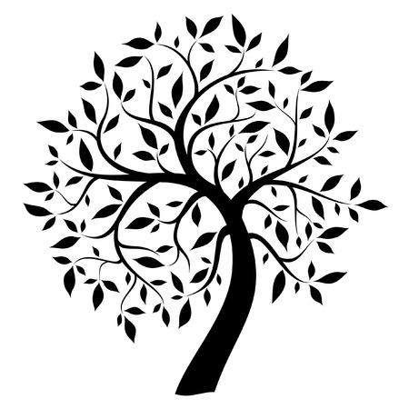 arbre feuille: arbre noir