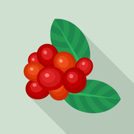 coffee berry: red ripe coffee Illustration