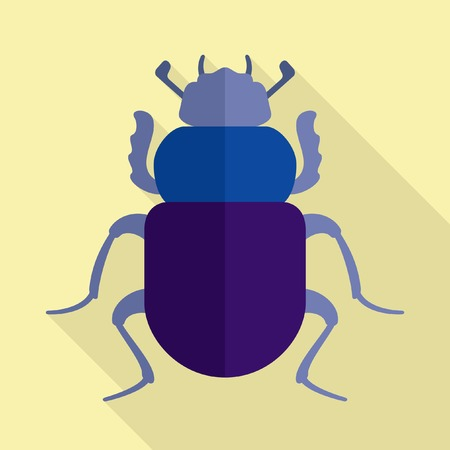 dung: Scarab beetle