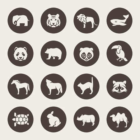 panda: Animals icon set