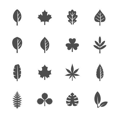arboles blanco y negro: Conjunto de iconos de hoja
