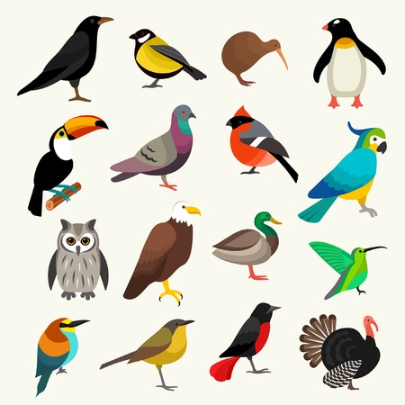 birds  イラスト・ベクター素材