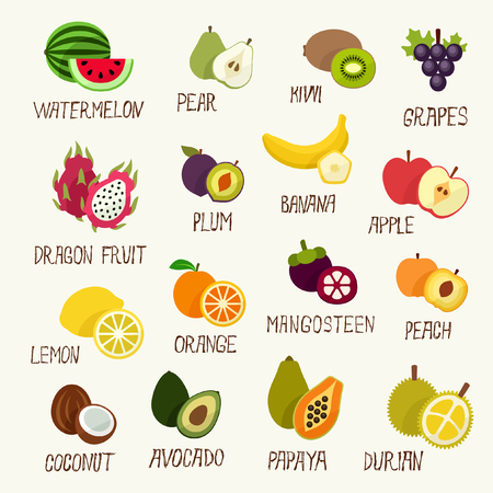 fruit illustration: Fruits collection Illustration