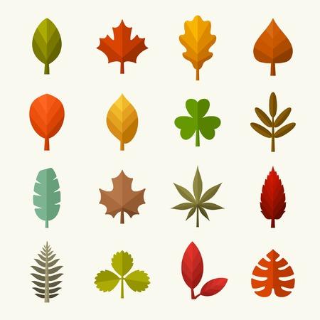 Autumn leaves vector set Vettoriali