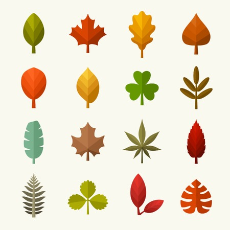 Autumn leaves vector set Illustration