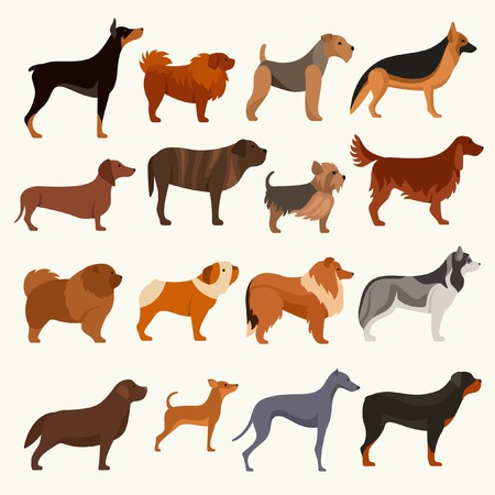 Dog breeds vector illustration Иллюстрация