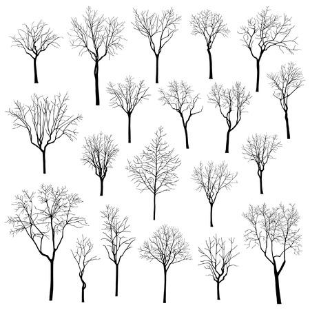 Bäume Vektorgrafik