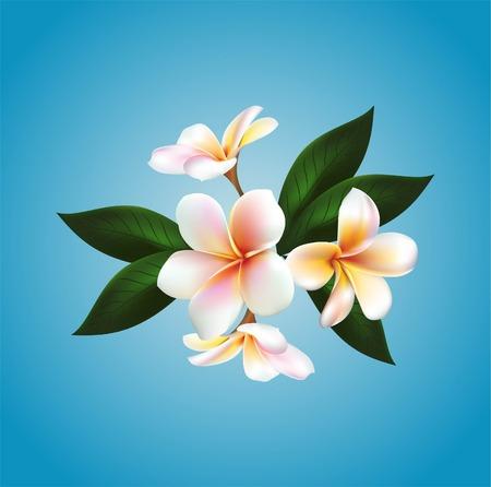 floating: Vector floating flower Illustration