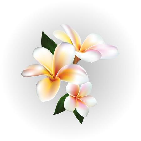Vector floating flower illustration Illustration