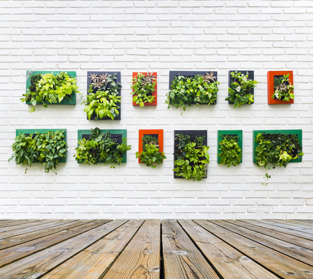 home garden: vertical garden on white brick wall texture background