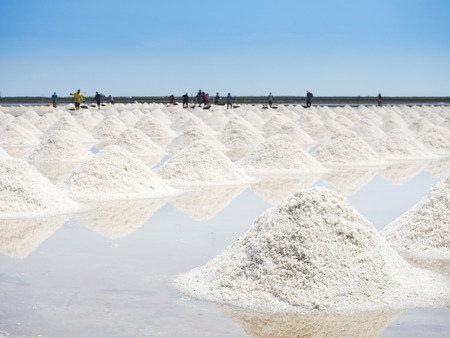factory farm: Heap of salt in the farm made of natural ocean salty water evaporated by sunny light, preparing for last process before sent to industry factory Stock Photo