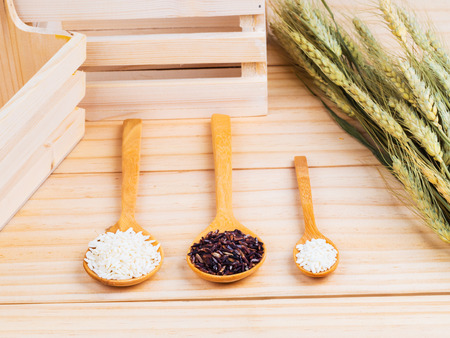 milled: two types of milled rice as raw ingredient on wooden spoonsvvv