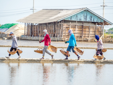 production area: PETCHABURI, THAILAND - MAY 25, 2015: Unidentified people carry baskets with salt in collecting process before sent to factory. Salt production is one of the main industries in seashore area. Editorial