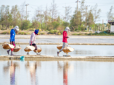 production area: PETCHABURI, THAILAND - MAY 25, 2015: Unidentified people carry baskets with salt in collecting process before sent to factory. Salt production is one of the main industries in seashore area. Stock Photo