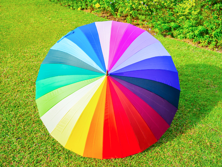 chromatic colour: colorful umbrella in rainbow color on the green grass