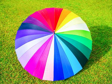 chromatic: colorful umbrella on the green grass background