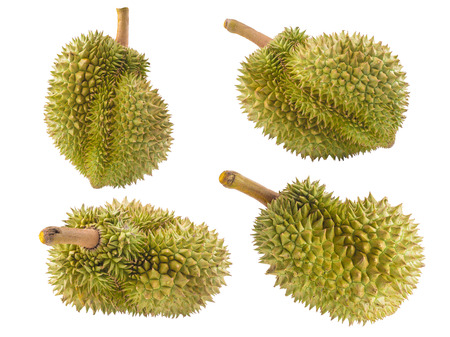 smelly: mature durian fruit isolated on white background, durian is a smelly fruits and called king of fruit. Stock Photo