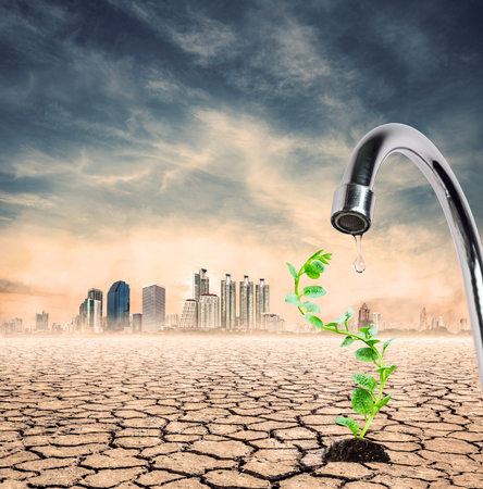 lack water: lack of water,only single drop available for single sprout, expression on EL nino climate effect Stock Photo