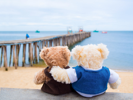 two teddy brown bear, lovely dolls sitting outdoor on the sea shore