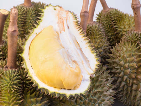 close up shot on durian, sweet king of fruits on white  background,  vegetable for diet with nutrition ingredient concept.