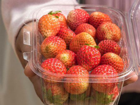 ripe strawberry fruit ready to serv, rich of vitamin , fiber and nutrition