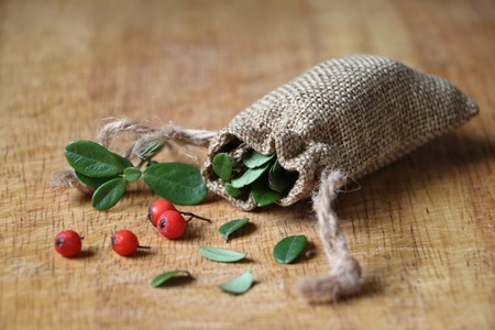 herbs and berries for health