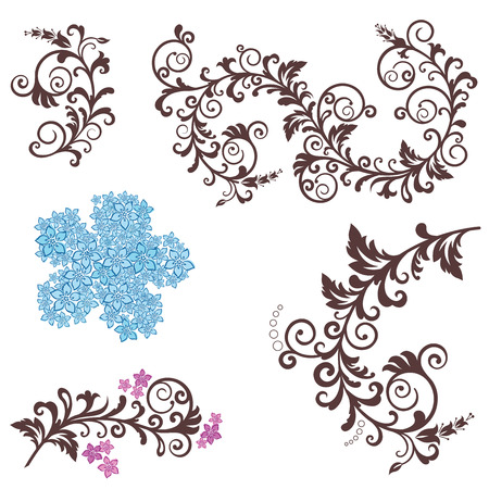 Beautiful floral design elements Vector