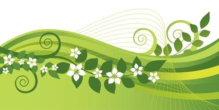 blossoming yellow flower tree: White jasmine flowers and green swirls banner