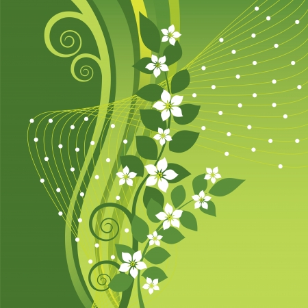 White Jasmine flowers on green swirls and waves background
