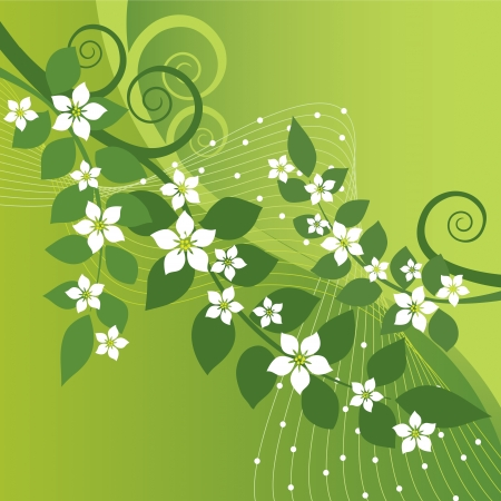 Beautiful jasmine flowers and green swirls on green background   Illustration
