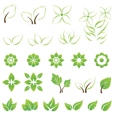 maple leaf icon: Set of green leaf and flower design elements. This image is a vector illustration.