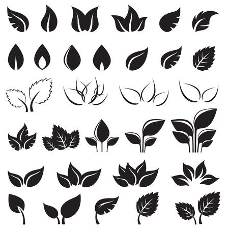 Set van zwarte bladeren ontwerpelementen geïsoleerd op een witte achtergrond. Deze afbeelding is een vectorillustratie. Stock Illustratie