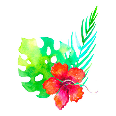 Watercolor tropical bouquet traditional drawing. Painting aquarelle exotic flower isolated on white background.Invitation card tropical flower and palm leaf floral composition.Wedding design template