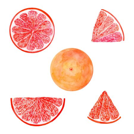 Watercolor grapefruit set juicy fruit and slice isolated on white background. Hand painted food illustration Design. Healthy vegan food. Can be used as greeting card for birthday, wedding, healthy