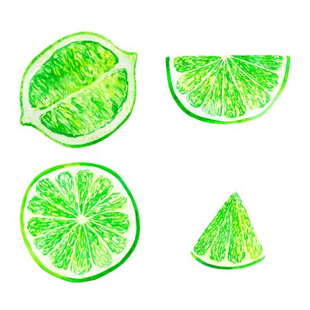 Watercolor lime set juicy fruit and lime slice isolated on white background. Hand painted food illustration Design. Healthy vegan food. Can be used as greeting card for birthday, wedding, healthe Stock Photo