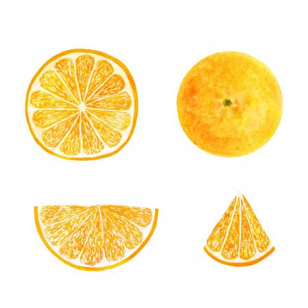 Watercolor orange set juicy fruit and orange slice isolated on white background. Hand painted food illustration Design. Healthy vegan food. Can be used as greeting card for birthday, wedding, health