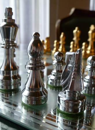luxuries: Game of chess