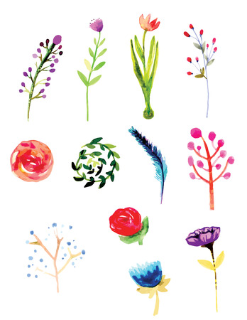 foliages: Flowers and Foliages watercolor