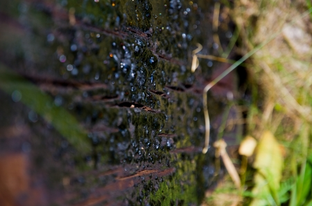 oiled: Old oiled railroad sleeper covered with asphalt bubbles closeup