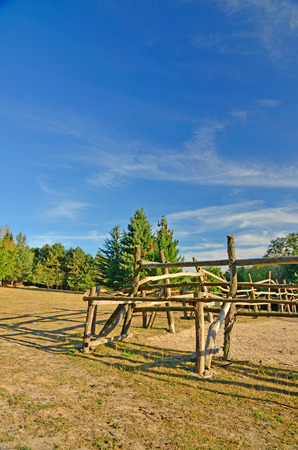Late summer afternoon on an abandoned farm   ranch in the woods with scenic cloudy sky photo