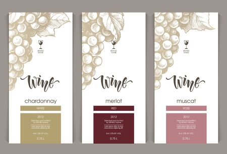 Vector set of templates packaging wine